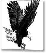 Black And White With Pen And Ink Drawing Of American Bald Eagle  Metal Print by Mario Perez
