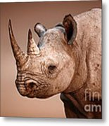 Black Rhinoceros Portrait Metal Print by Johan Swanepoel