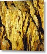 Blanchard Springs Caverns-arkansas Series 04 Metal Print by David Allen Pierson