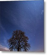 Blessed By The Moon Metal Print by Davorin Mance