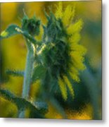 Bliss For Me Metal Print by Rima Biswas