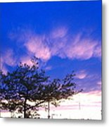 Blue And Purple Skies At Sunset Metal Print by Elisabeth Ann