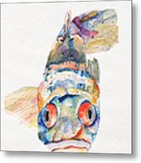 Blue Fish   Metal Print by Pat Saunders-White