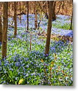 Blue Flowers In Spring Forest Metal Print by Elena Elisseeva