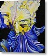 Blue Magic Metal Print by Bruce Bley