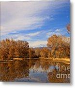 Bosque Del Apache Reflections Metal Print by Mike  Dawson