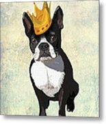 Boston Terrier With A Crown Metal Print by Kelly McLaughlan