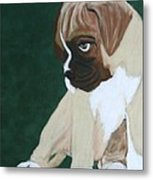 Boxer Pup Metal Print by Michele Turney