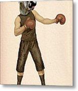 Boxing Bulldog Metal Print by Kelly McLaughlan