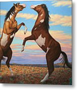 Boxing Horses Metal Print by James W Johnson
