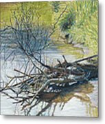 Branches By A River Bank Metal Print by Nick Payne