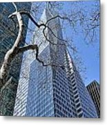 Branching Out Metal Print by Tony Ambrosio