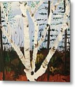 Brightest Birch Metal Print by Suzanne  Marie Leclair