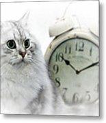 British Longhair Cat Time Goes By II Metal Print by Melanie Viola