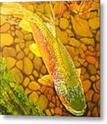 Brown Fish Metal Print by Terry Gill