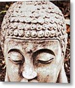 Buddha - Serenity  Metal Print by Patricia Januszkiewicz
