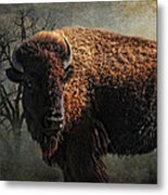 Buffalo Moon Metal Print by Karen Slagle