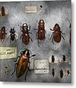 Bug Collector - The Insect Collection  Metal Print by Mike Savad