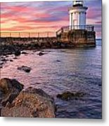 Bug Light Park Metal Print by Benjamin Williamson