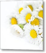 Bunch Of Daisies Metal Print by Anne Gilbert