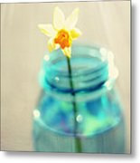 Buttercup Photography - Flower In A Mason Jar - Daffodil Photography - Aqua Blue Yellow Wall Art  Metal Print by Amy Tyler
