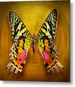 Butterfly - Butterfly Of Happiness  Metal Print by Mike Savad
