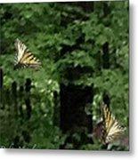 Butterfly Waltz Metal Print by Debra     Vatalaro