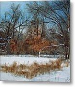 By Rattlesnake Creek Metal Print by Denny Dowdy