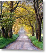 Cades Cove Great Smoky Mountains National Park - Sparks Lane Metal Print by Dave Allen