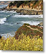 California Coast Overlook Metal Print by Carol Groenen