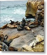 California Dreaming Metal Print by Mary Machare
