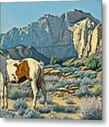 Canyon Country Paints Metal Print by Paul Krapf