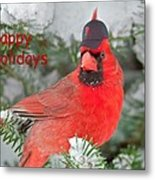 Capped The Cardinals Metal Print by Dale J Martin