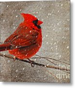 Cardinal In Snow Metal Print by Lois Bryan