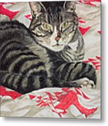 Cat On Quilt  Metal Print by Anne Robinson