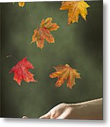 Catching Leaves Metal Print by Amanda Elwell