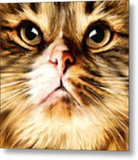Cat's Perception Metal Print by Lourry Legarde