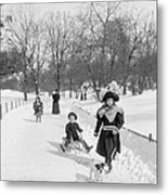 Central Park In New York Metal Print by Anonymous