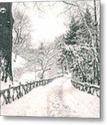 Central Park Winter Landscape Metal Print by Vivienne Gucwa