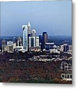 Charlotte Metal Print by Skip Willits