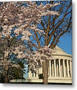 Cherry Blossoms 2013 - 048 Metal Print by Metro DC Photography