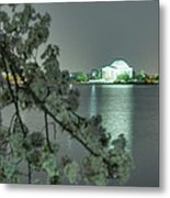 Cherry Blossoms 2013 - 102 Metal Print by Metro DC Photography