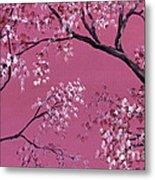 Cherry Blossoms  Metal Print by Darice Machel McGuire