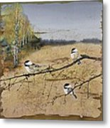 Chickadees And A Row Of Birch Trees Metal Print by Carolyn Doe