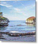 China Cove Point Lobos Metal Print by Brad Scott