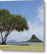 Chinamans Hat With Tree - Oahu Hawaii Metal Print by Brian Harig