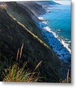 Cliff Grass At Big Sur Metal Print by Adam Pender