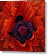 Close Up Poppy Metal Print by Billie Colson
