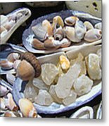 Coastal Beach Art Prints Agates Shells Acorn Metal Print by Baslee Troutman