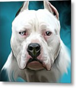 Cold As Ice- Pit Bull By Spano Metal Print by Michael Spano